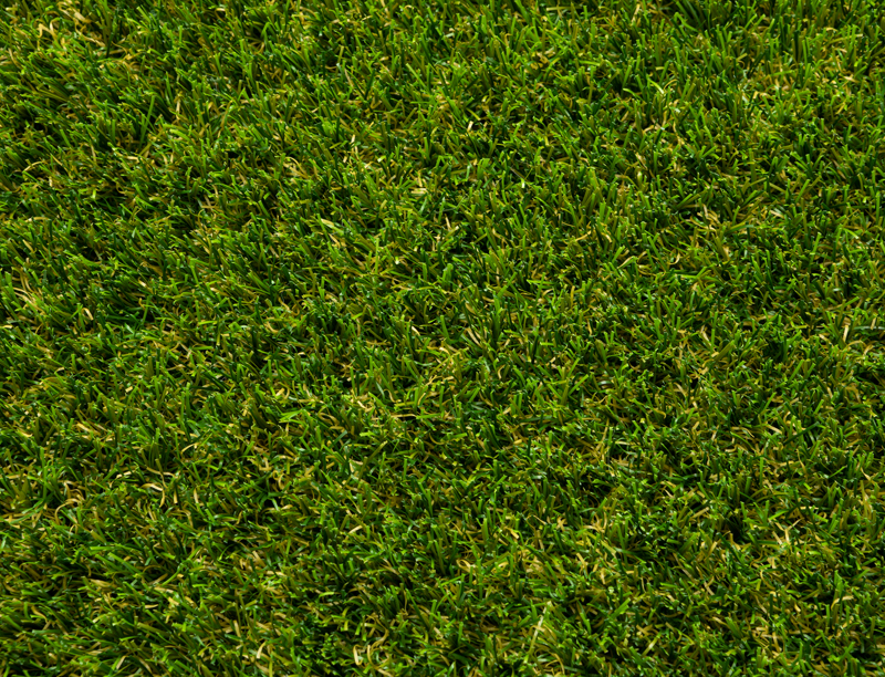 Regency artificial grass